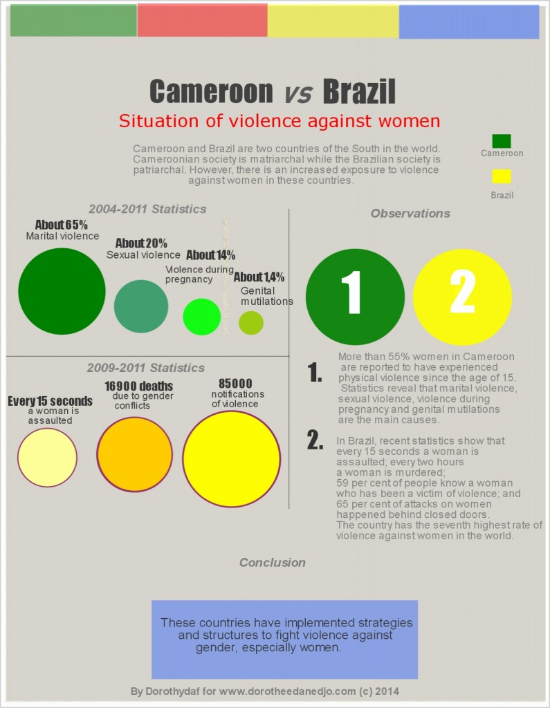 Datacollection_violence_gender_cameroon_brazil